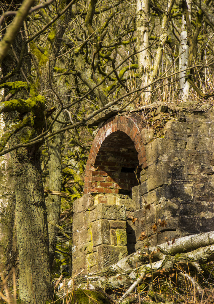 The old ice house by shepherdman