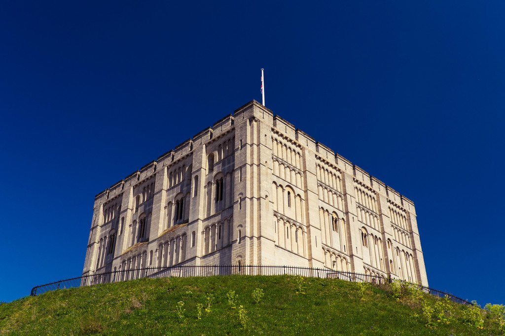 Day 113, Year 3 - Norwich Castle by stevecameras