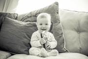 27th Apr 2015 - Day 117, Year 3 - The Jude Bug