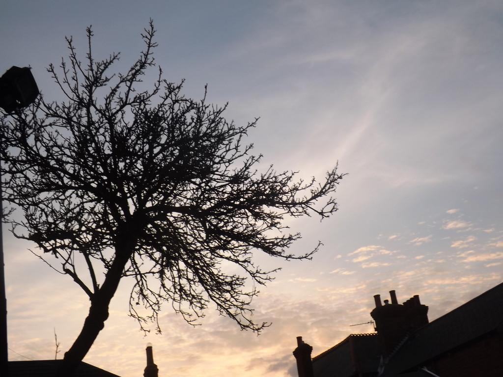 evening sky by plainjaneandnononsense