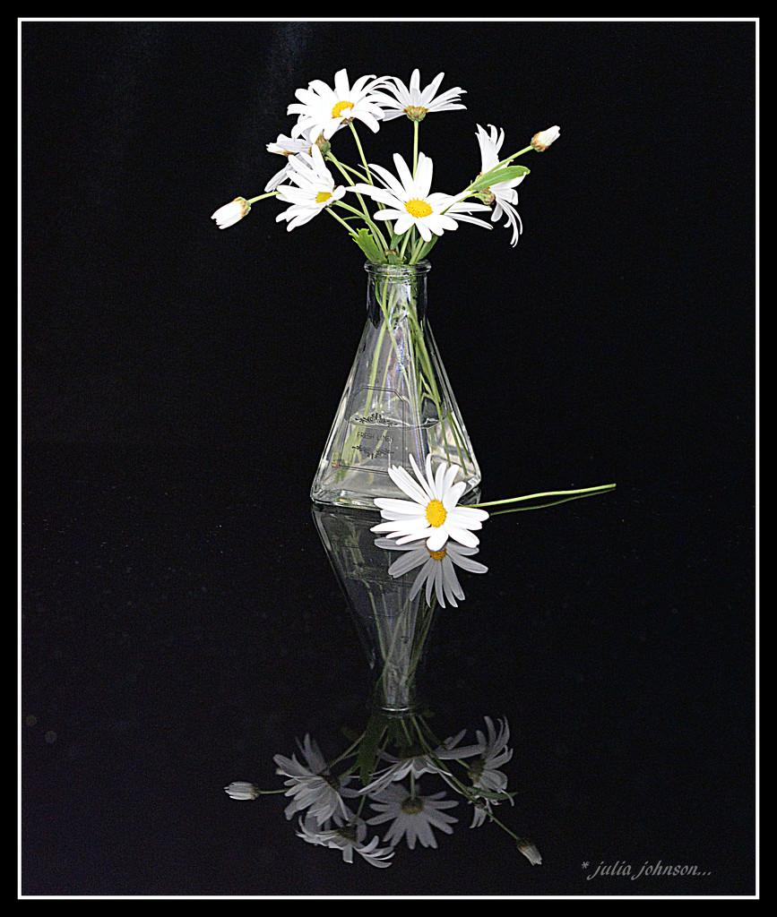 Daisy vase by julzmaioro