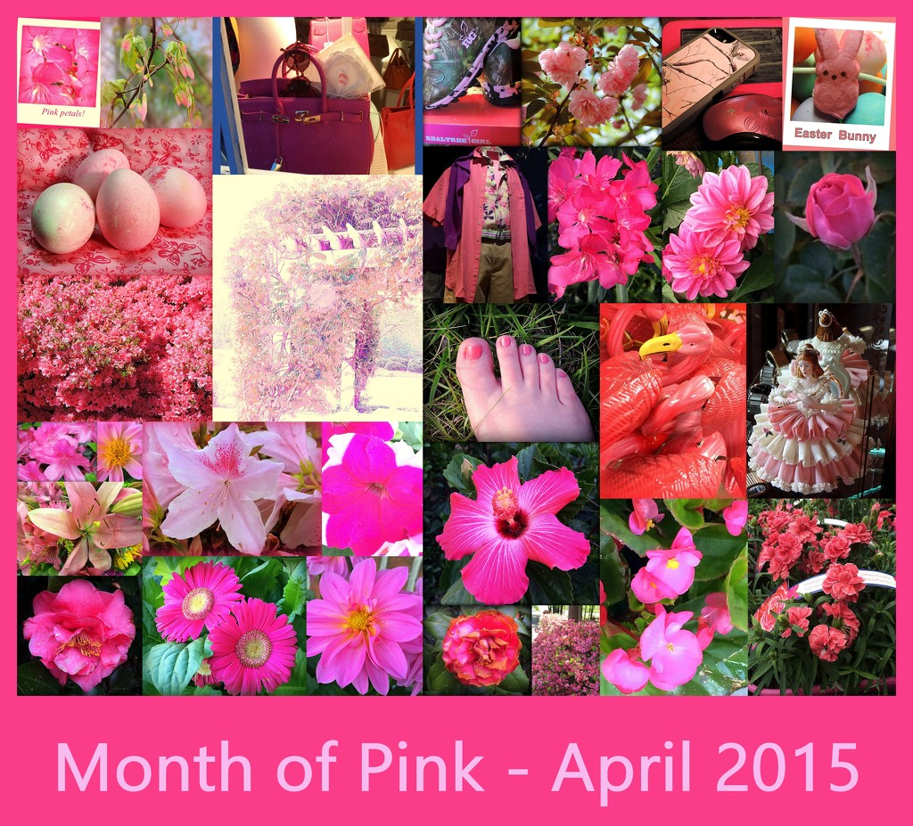 A Complete Month of Pink  by homeschoolmom