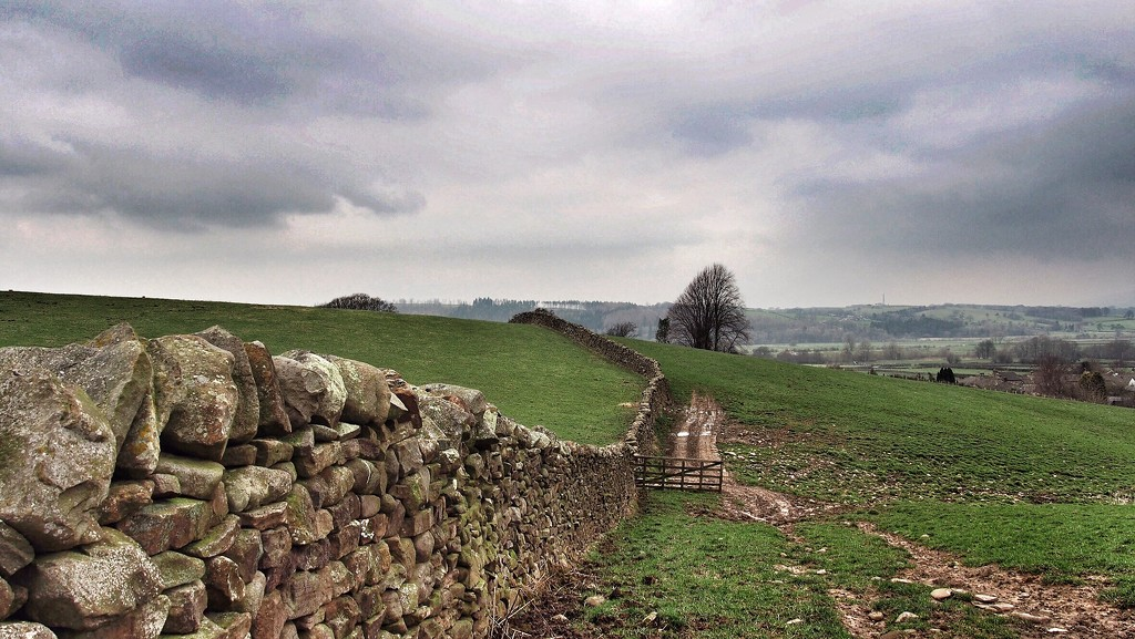 Dry stone wall by happypat