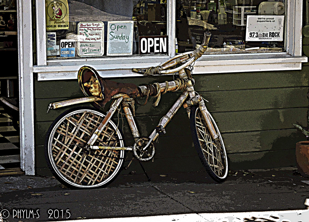 Queen of the Bohemian Bicycle Race... by elatedpixie