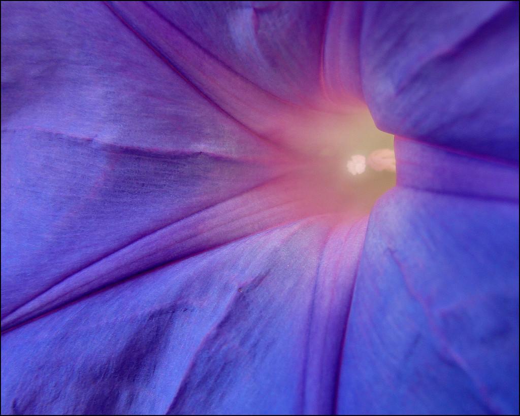 the inner light by aikimomm