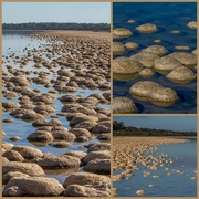 1st May 2015 - Thrombolites