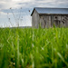 Simple Shed by tracymeurs