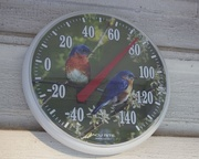 14th May 2015 - Thermometer