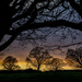 Yorkshire sunset by shepherdman