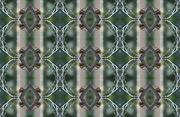 9th Dec 2018 - pattern butterfly