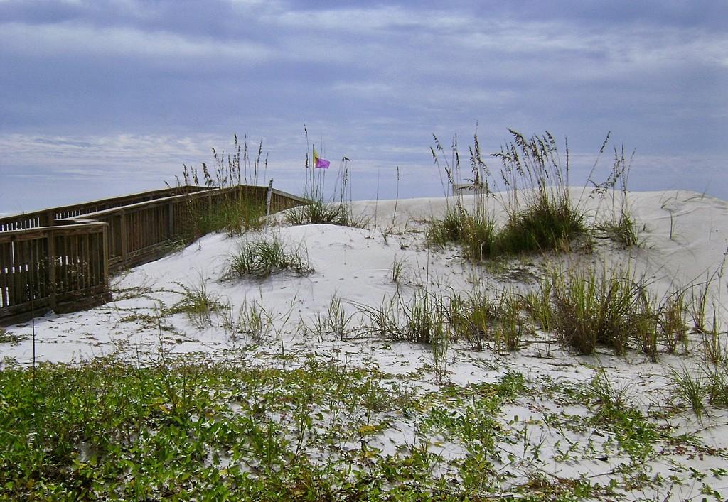 Dunes, Sandestin Beach Club by soboy5