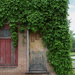 Vine Covered Cottage  (Urban Style) by lindasees