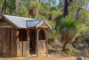 14th May 2015 - Hut in the bush