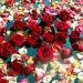 Rose Water by miranda