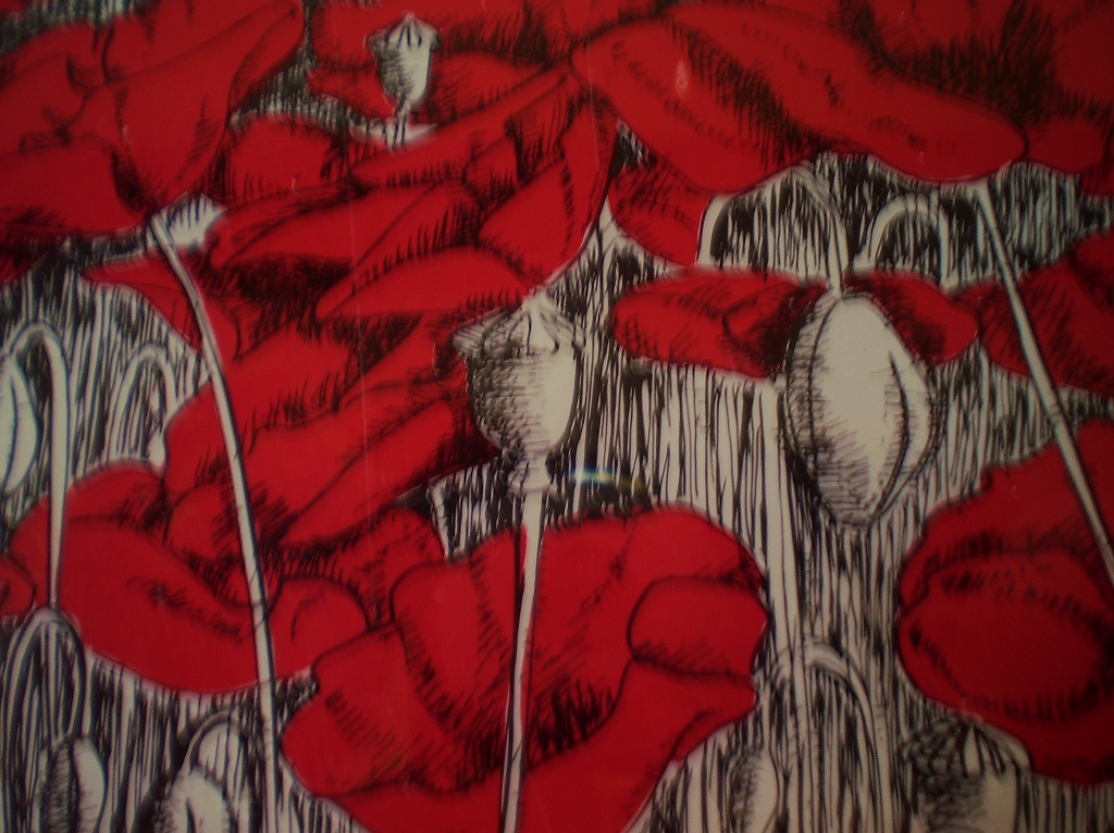 Remembrance  day poppies .  by snowy