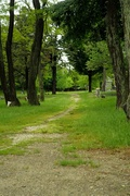 1st Jun 2015 - Western Cemetery