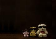 3rd Jun 2015 - (Day 110) - 3 Tough Toys