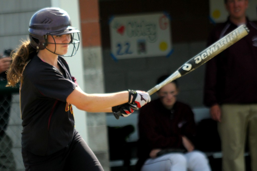 A great day at the plate! by dianen