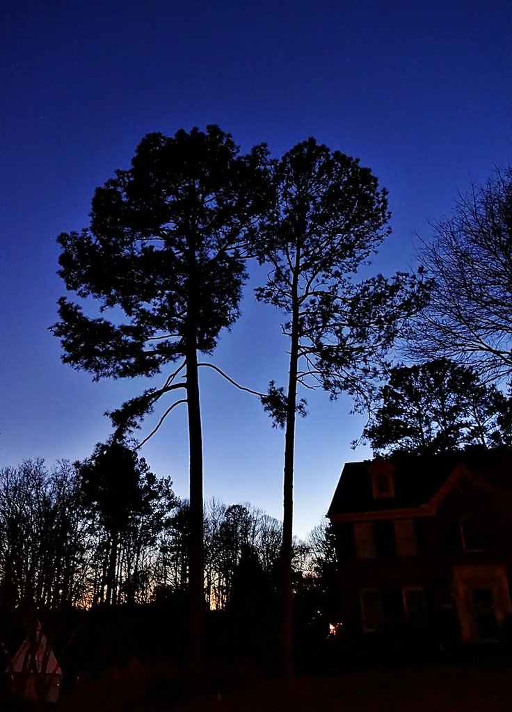 Blue hour by soboy5