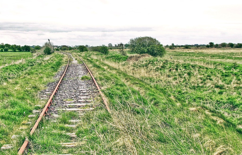 The Green Line by jack4john