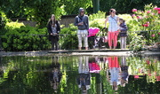 7th Jun 2015 - Arboretum Reflections