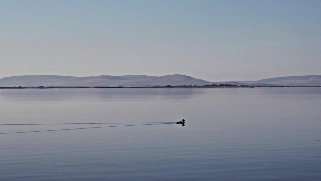 A line on the horizon  by jack4john