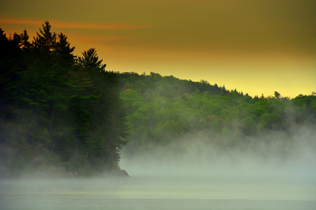 Early Morning Mist by jayberg