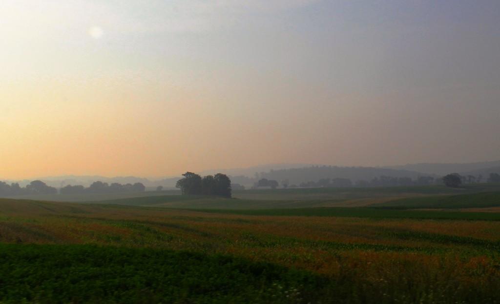 Morning Light by digitalrn