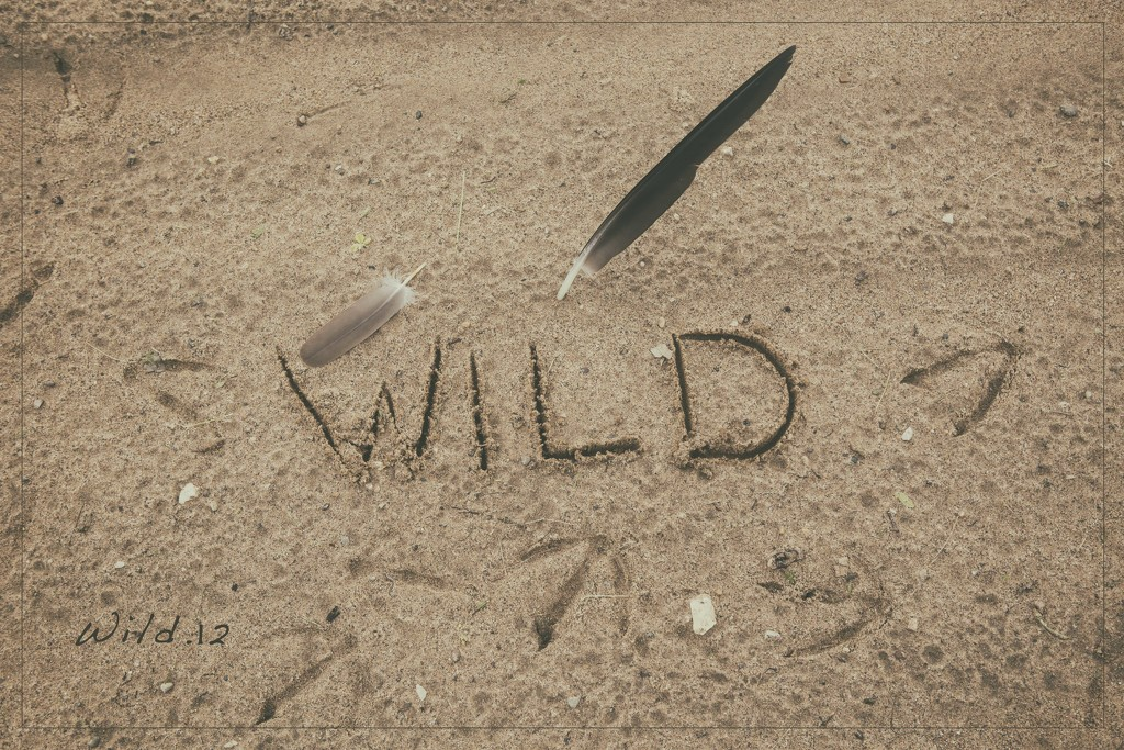Take a Walk on the Wild Side by lyndemc