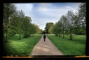 9th May 2015 - Day 131, Year 3 - Hyde Park Run
