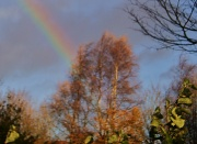 12th Nov 2010 - After The storm.