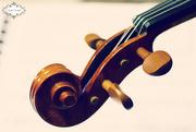 15th Jun 2015 - Violin Scroll