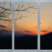 Triptych sunset by randystreat