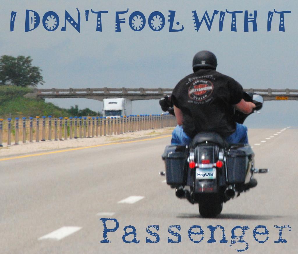 Hog Wild - No Passenger by genealogygenie