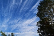 19th Jun 2015 - Cirrus Clouds?