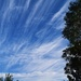 Cirrus Clouds? by happysnaps