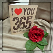 19th Jun 2015 - 365 Days of Love.