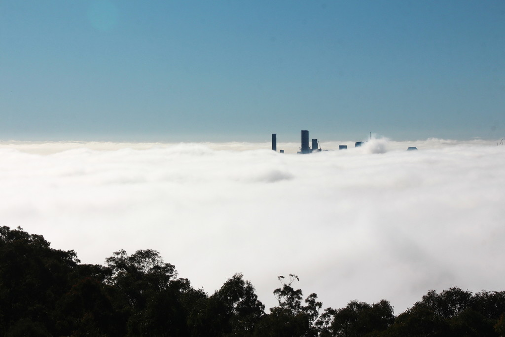 Above the Fog by terryliv