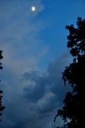 24th Jun 2015 - After the storm