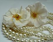 26th Jun 2015 - Pearls for Tears.