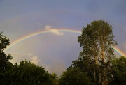 28th Jun 2015 - Early morning rainbow!