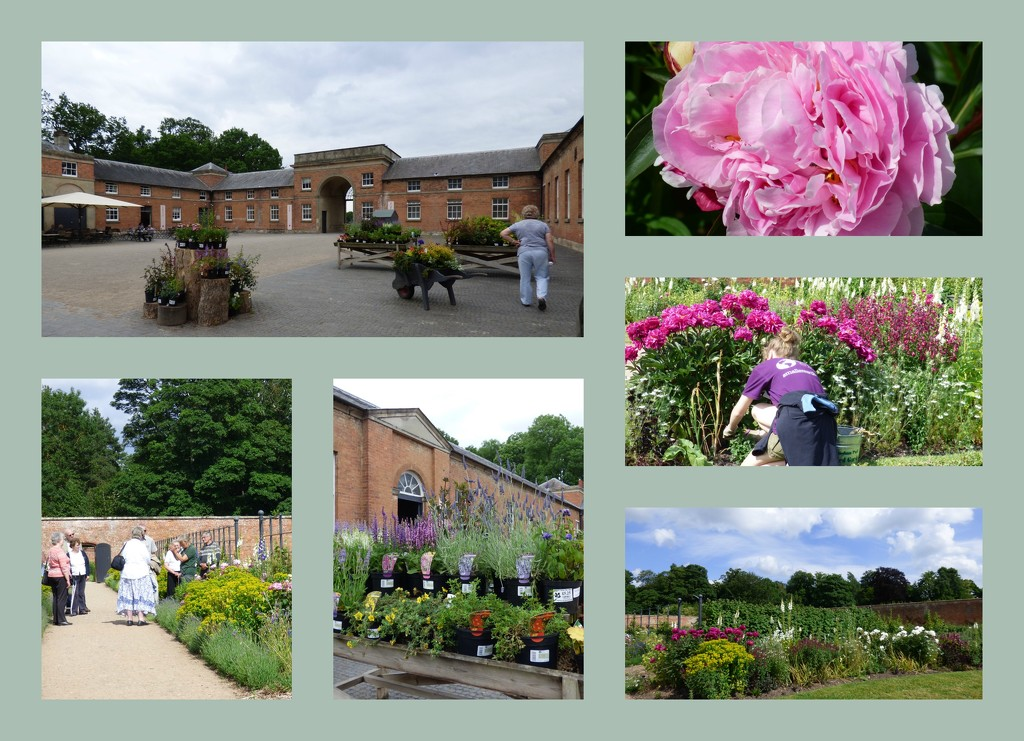 The Walled Garden - Attingham Park NT by beryl