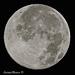 Moon 7:2:15