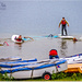 Sailboarding Beginners