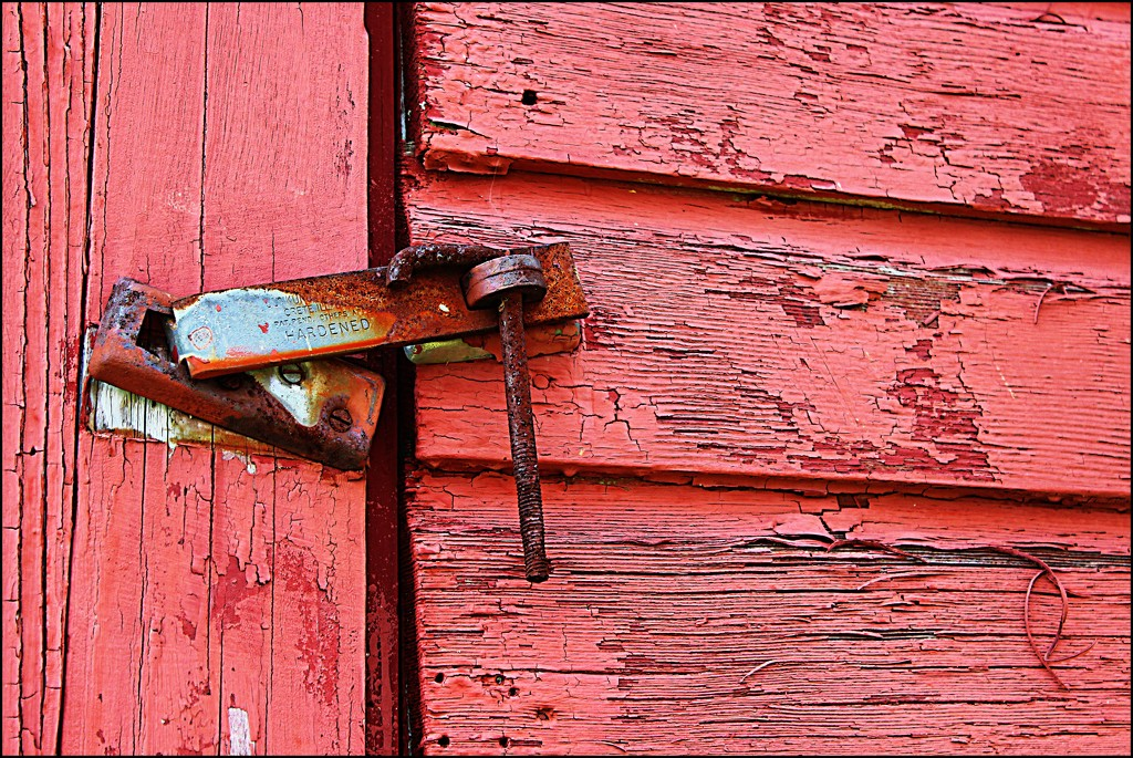 Rusty Hinge at Rolling Hill Farm by olivetreeann