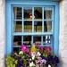 Pub Window by swillinbillyflynn