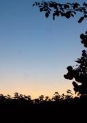30th Jun 2015 - 50 shades of sky...