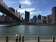 29th Jun 2015 - Queensboro Bridge, as seen from Roosevelt Island