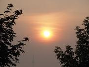 7th Jul 2015 - Hazy Sunlight