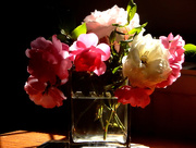 8th Jul 2015 - Roses from the garden....